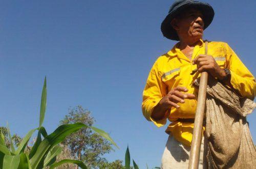 hombre campesino labrando la tierra